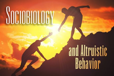 Sociobiology and Altruistic Behavior